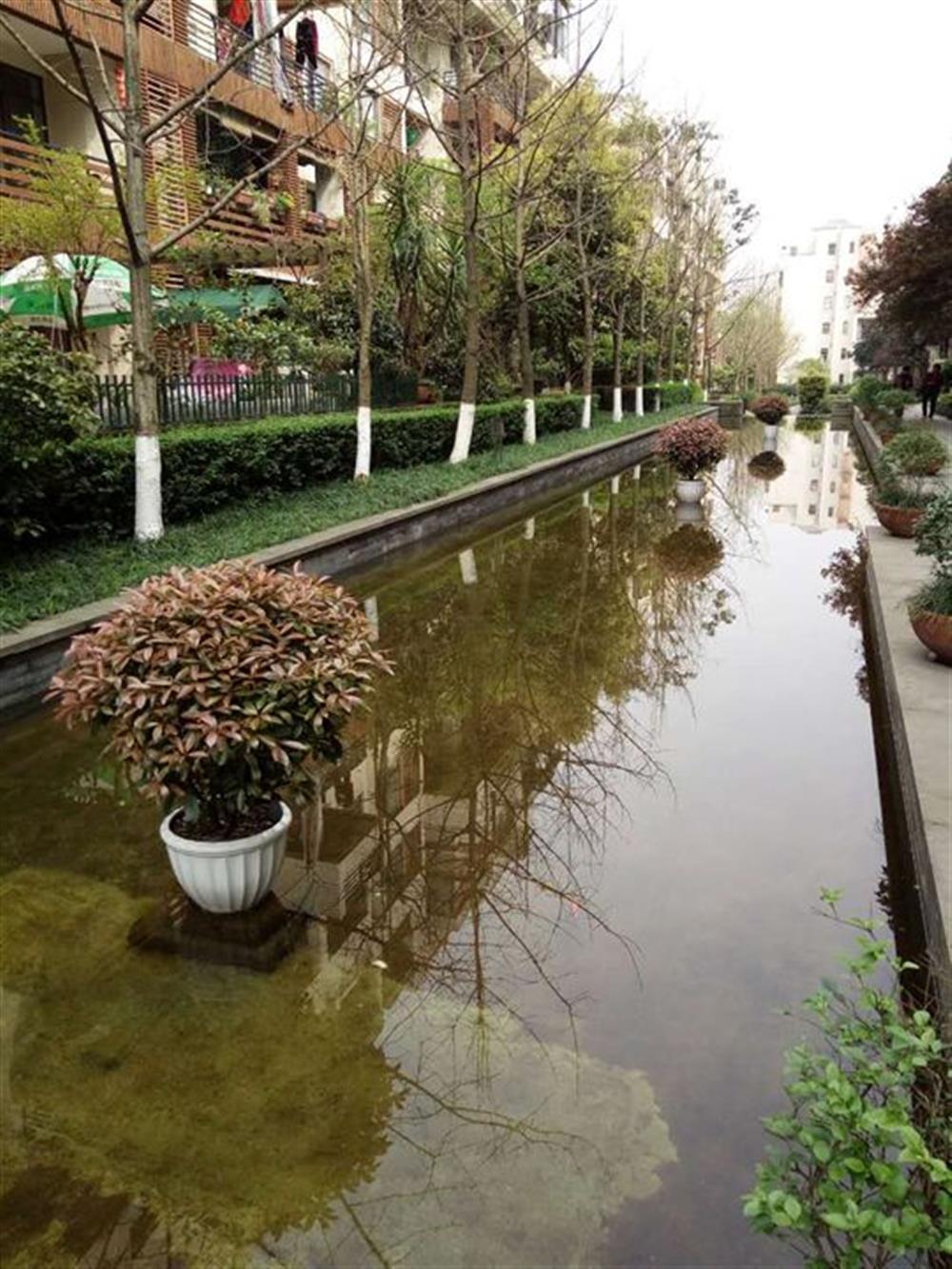 同景国际W组团-花园